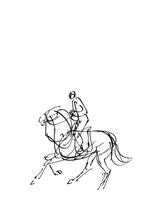 白地騎馬の線画 10155000720| 写真素材・ストックフォト・画像・イラスト素材|アマナイメージズ