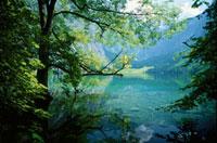 オーバー湖 アルプス