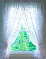 白いカーテンのかかる窓