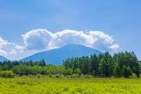 小田代原と男体山