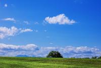 牧草地と高原山と空