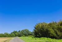 快晴の青空と田舎道 10158006710| 写真素材・ストックフォト・画像・イラスト素材|アマナイメージズ