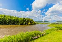 台風で増水した那珂川と木舟