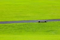 草原と道とベンチ