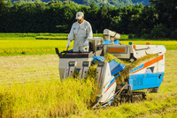 コンバインに乗り稲刈りする男性