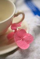 白いカップにピンクのアジサイの花びら