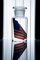 ホルマリン漬けになったアメリカ国旗