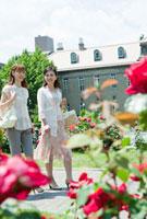 バラの花咲く公園を散歩する親子 10161005279| 写真素材・ストックフォト・画像・イラスト素材|アマナイメージズ