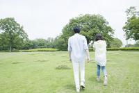 草原を散歩するカップル、後ろ向き