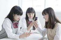 携帯電話を使う高校生たち