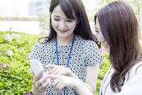スマホを使う20代女性ビジネスイメージ