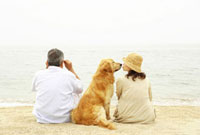 海辺で犬と座るシニア夫婦