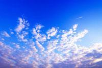 鱗雲と飛行機雲