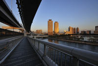 レインボーブリッジと夕日に輝くお台場のビル群