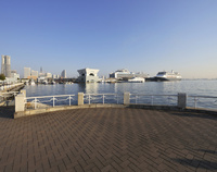 山下公園から大桟橋の豪華客船を見る