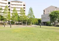 港北ニュータウンのマンションと緑地 10168003243| 写真素材・ストックフォト・画像・イラスト素材|アマナイメージズ