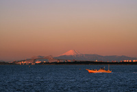 朝焼けの富士山と東京ゲートブリッジ