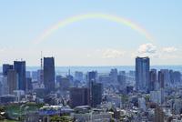 虹と都心の高層ビル群