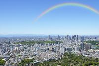 東京シティビューから見る新緑の新宿方向の眺め