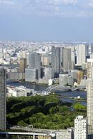 東京タワー特別展望台から見る築地方向の眺め