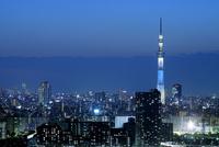 タワーホール船堀から見る東京スカイツリー方向の眺め