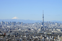 アイ・リンクタウン市川から見る富士山と東京スカイツリー 10168003775| 写真素材・ストックフォト・画像・イラスト素材|アマナイメージズ