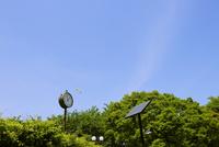 公園のソーラー時計とソーラー街灯