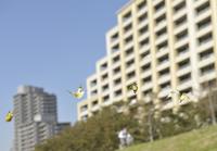 集合住宅と秋の蝶 10168003832| 写真素材・ストックフォト・画像・イラスト素材|アマナイメージズ