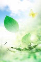 水と新緑 10169000078| 写真素材・ストックフォト・画像・イラスト素材|アマナイメージズ