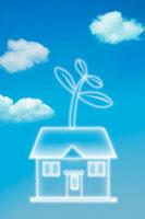 青空と伸びた双葉の住宅