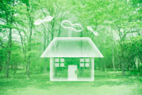 緑と双葉の住宅 10169000175| 写真素材・ストックフォト・画像・イラスト素材|アマナイメージズ