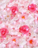 一面のピンクの花と花びらとダイヤ