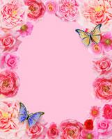 ピンクの花のフレームと蝶