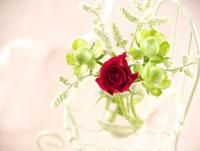 椅子の上の花
