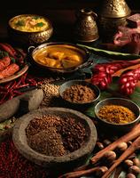 スパイスとインド料理