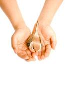 鳥をのせる子供の手