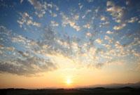 朝日昇る朝焼けの麦畑