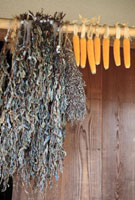 古民家の軒先に農作物 10172002381| 写真素材・ストックフォト・画像・イラスト素材|アマナイメージズ