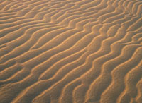 砂漠 10173002932| 写真素材・ストックフォト・画像・イラスト素材|アマナイメージズ