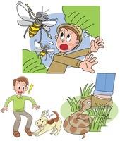動物による怪我 蜂と毒蛇と犬 10173003103| 写真素材・ストックフォト・画像・イラスト素材|アマナイメージズ
