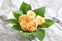 バラアレンジ 10175000194| 写真素材・ストックフォト・画像・イラスト素材|アマナイメージズ
