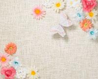 花と蝶 10178000233| 写真素材・ストックフォト・画像・イラスト素材|アマナイメージズ
