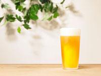 ビールと新緑