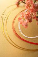 梅の花と紅白の水引 10179004382| 写真素材・ストックフォト・画像・イラスト素材|アマナイメージズ