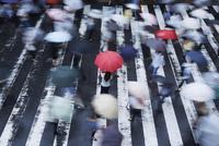 歩道で傘を持ってたたずむ女性を上から見る