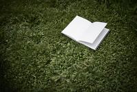 芝生の上の白い本