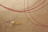 赤い水引と金色の和紙と鶴の熨斗飾り