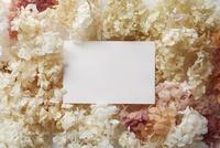 紫陽花のドライフラワーと白いカード
