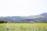 ヒマワリ畑で歩く女性