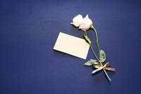 紺色テーブルクロスの上に置かれたピンクの花とメッセージカード